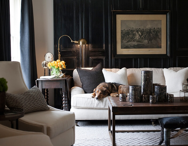 The living room is a comfortable setting for everyone, even Sean's third dog, Cooper. As seen here, black is a pivotal highlight color used throughout the home to add dimension and historic character.