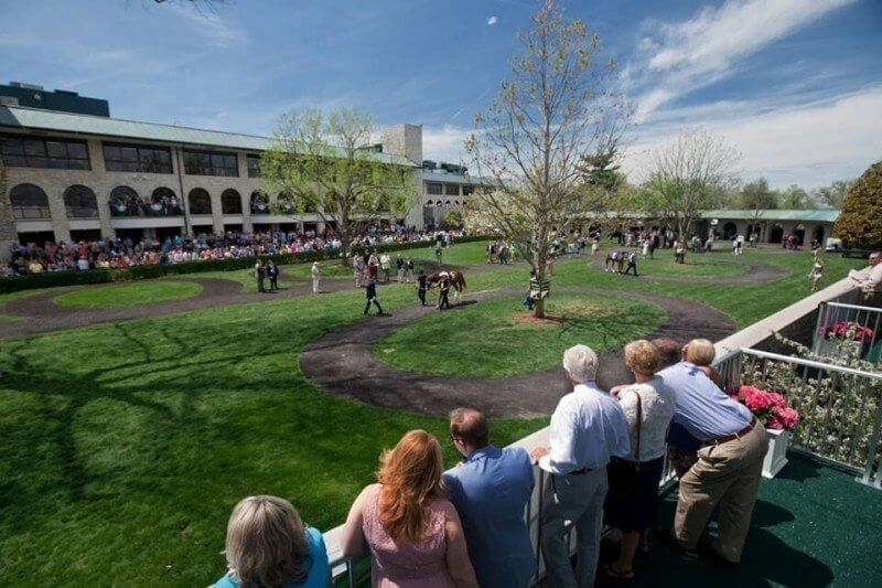 Insider's Advice for going to Keeneland