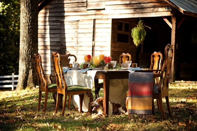 We found the ideal setting for our Harvest Party in one of the attendees' picturesque sprawling back yard situated beside an old farm house and surrounded with a lovely white picket fence.
