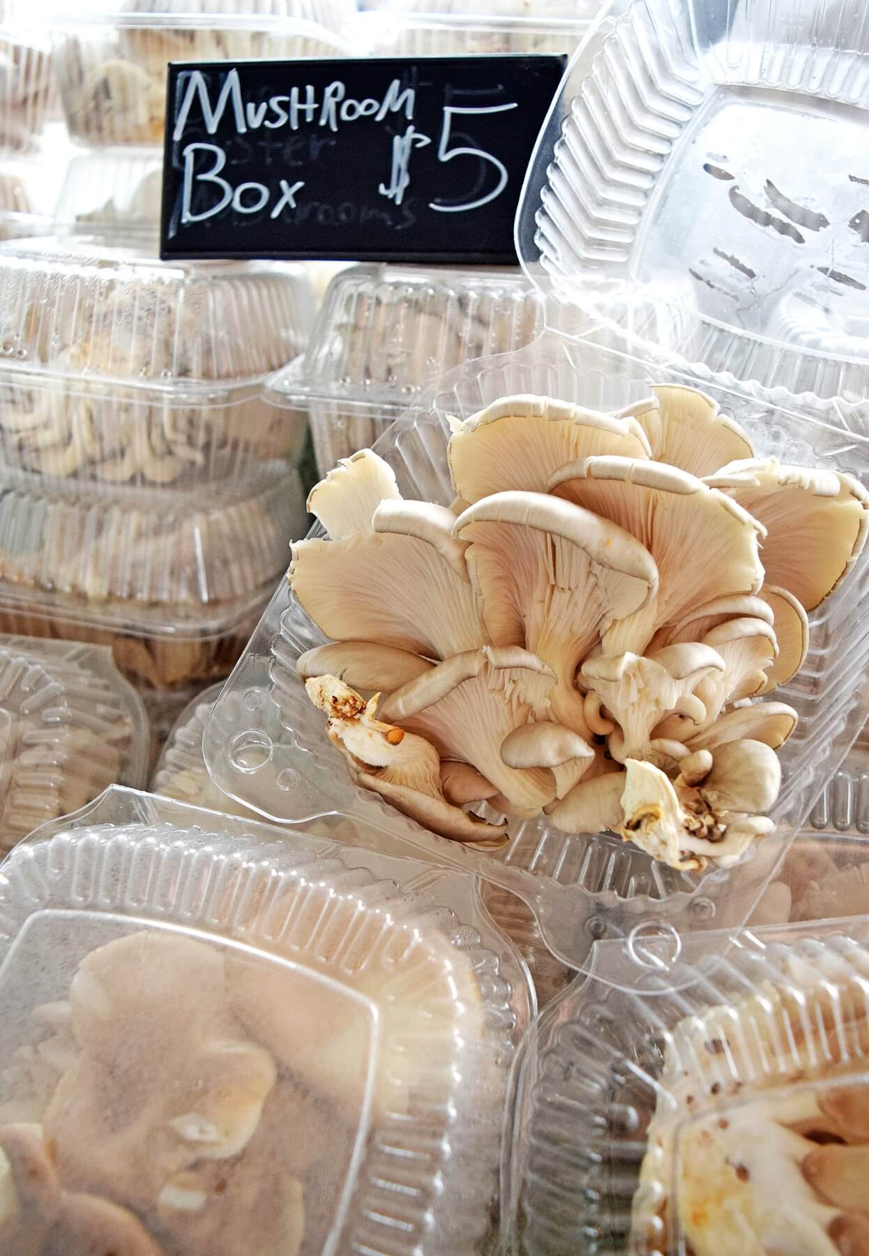 Find a box of mushrooms for $5 at the Memphis Farmers Market and the Cooper-Young Community Farmers Market.