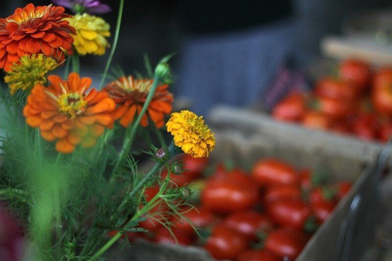 An Insider's Guide to the Nashville Farmers' Market