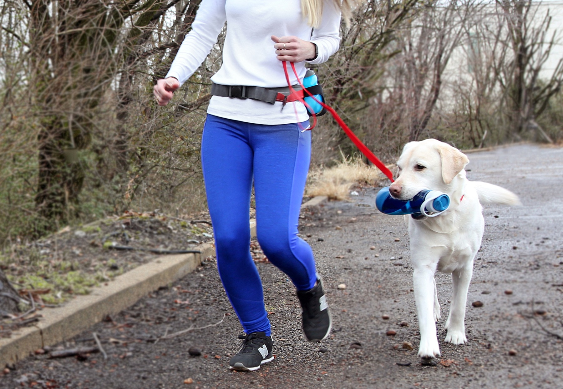 Kurgo K9 running belt for $29.99, Kurgo water bottle for $14.99, embroidered collar for $20 and the embroidered leash for $29, Hollywood Feed
