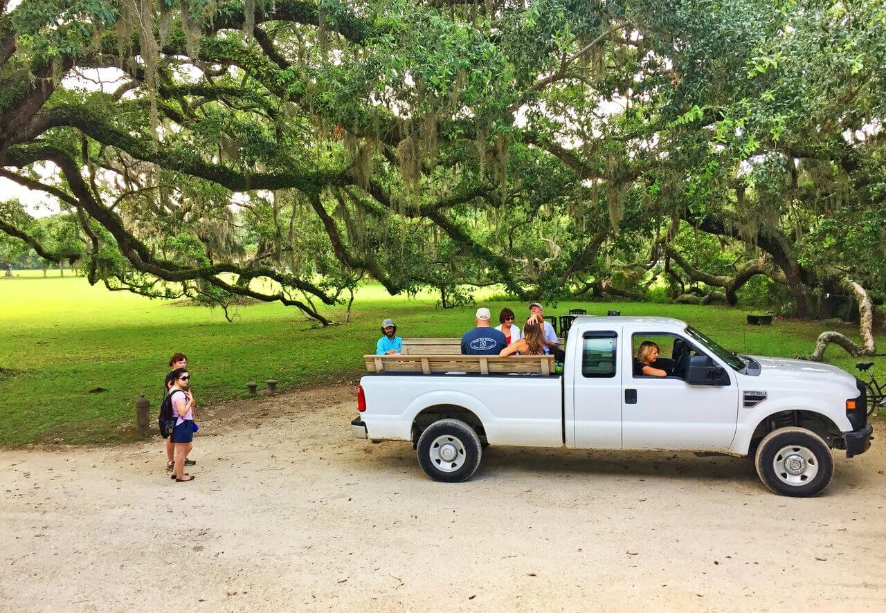 Greyfield often feels like summer camp for adults, with naturalist outings taking off from the front door in an open-bed truck.