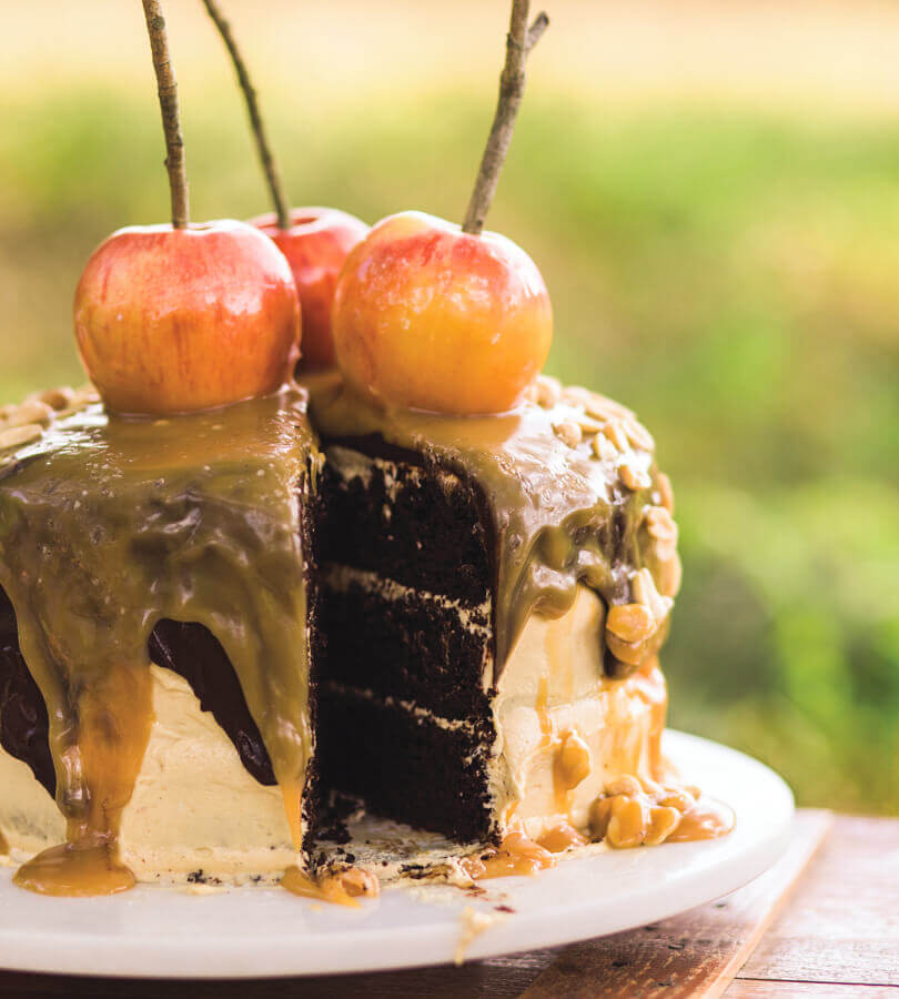 Chocolate Carmel Apple Cake by Katie Jacobs