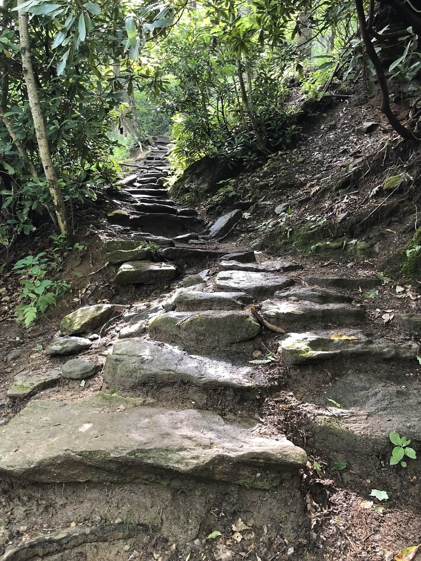 The trailhead to Whiteside Mountain is a beautiful stack of natural stairs that lead to some amazing panoramic views of the North Carolina mountains.
