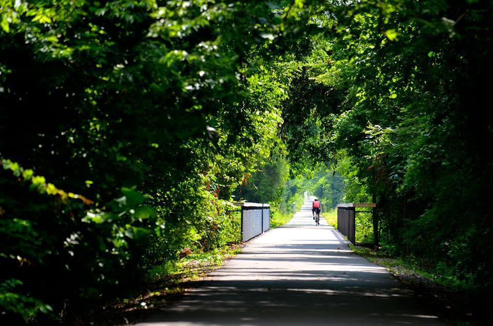 Bike, run, jog or just walk your dog down the beautiful, shaded Shelby Farms Greenline.