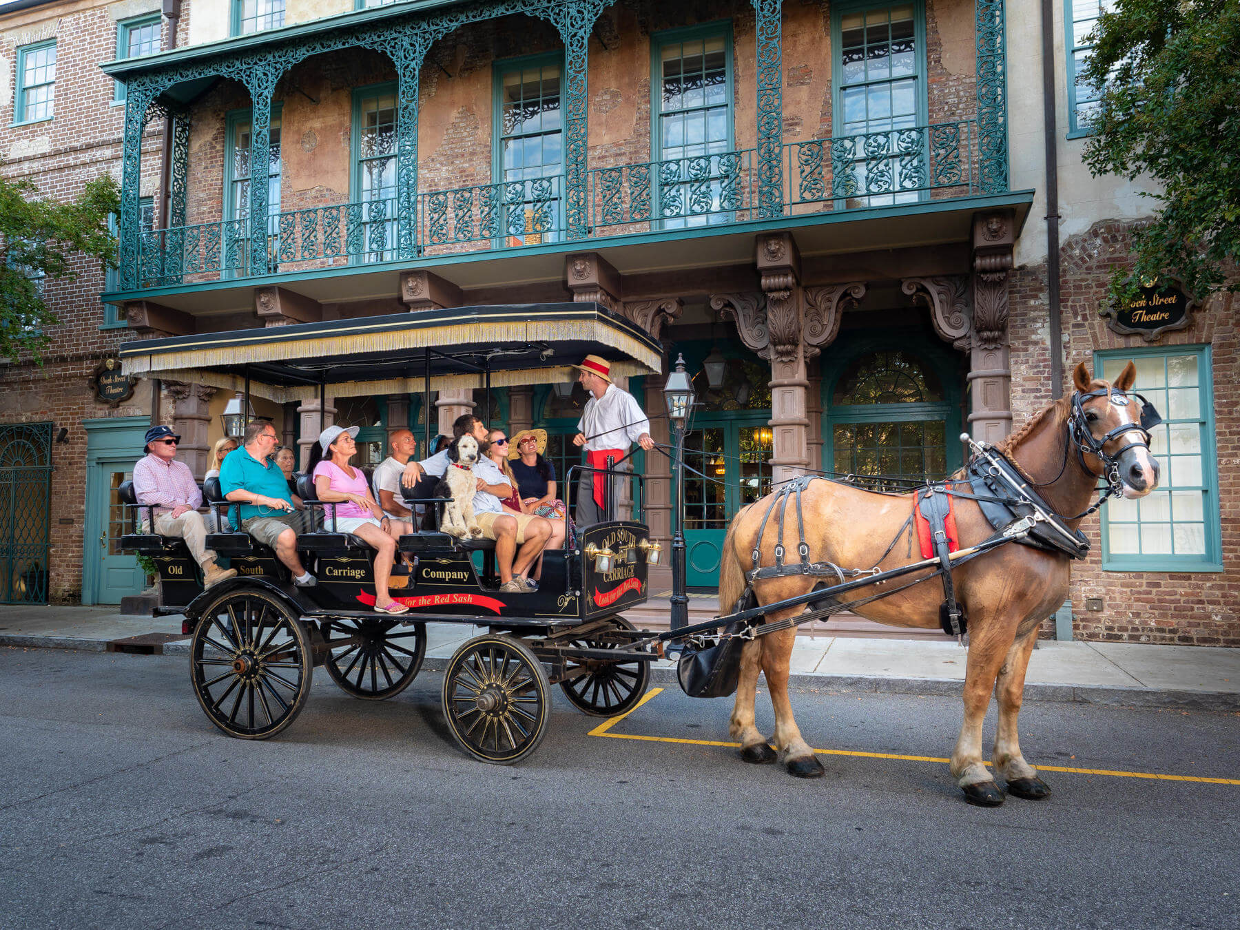 Horse drawn carriage tour