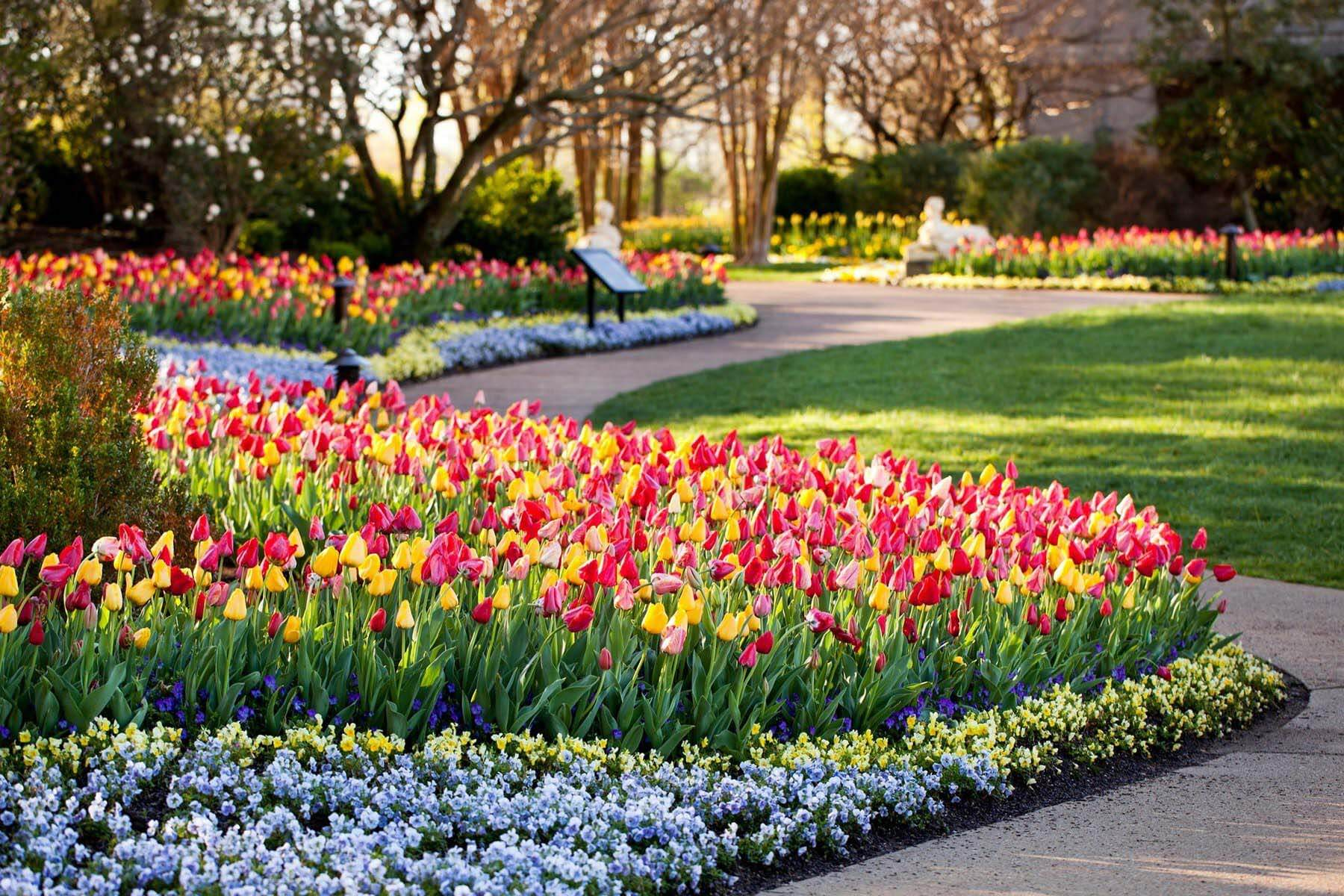 Cheekwood in Bloom, a Nashville March event