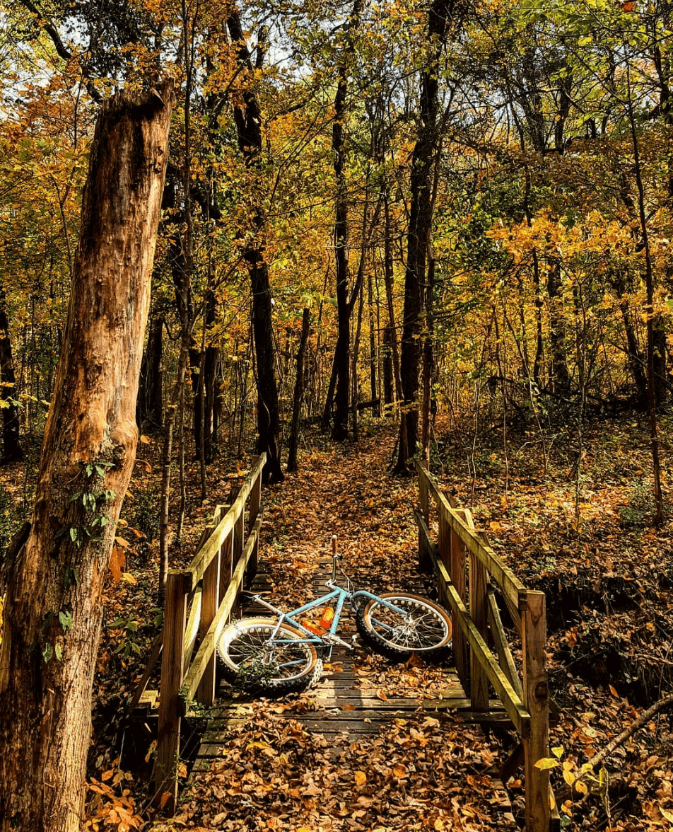 Cane Ridge mountain bike trail