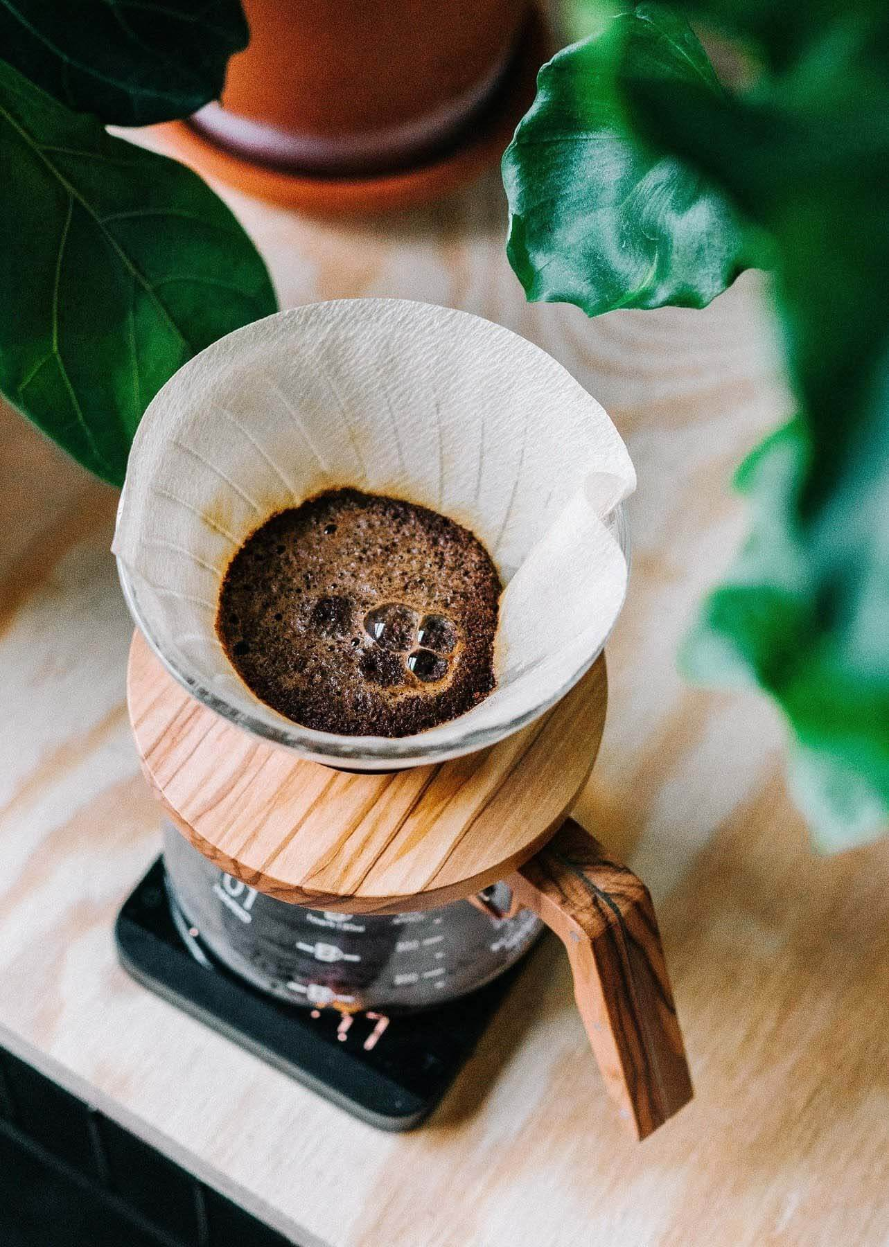 coffee moving through a paper filter