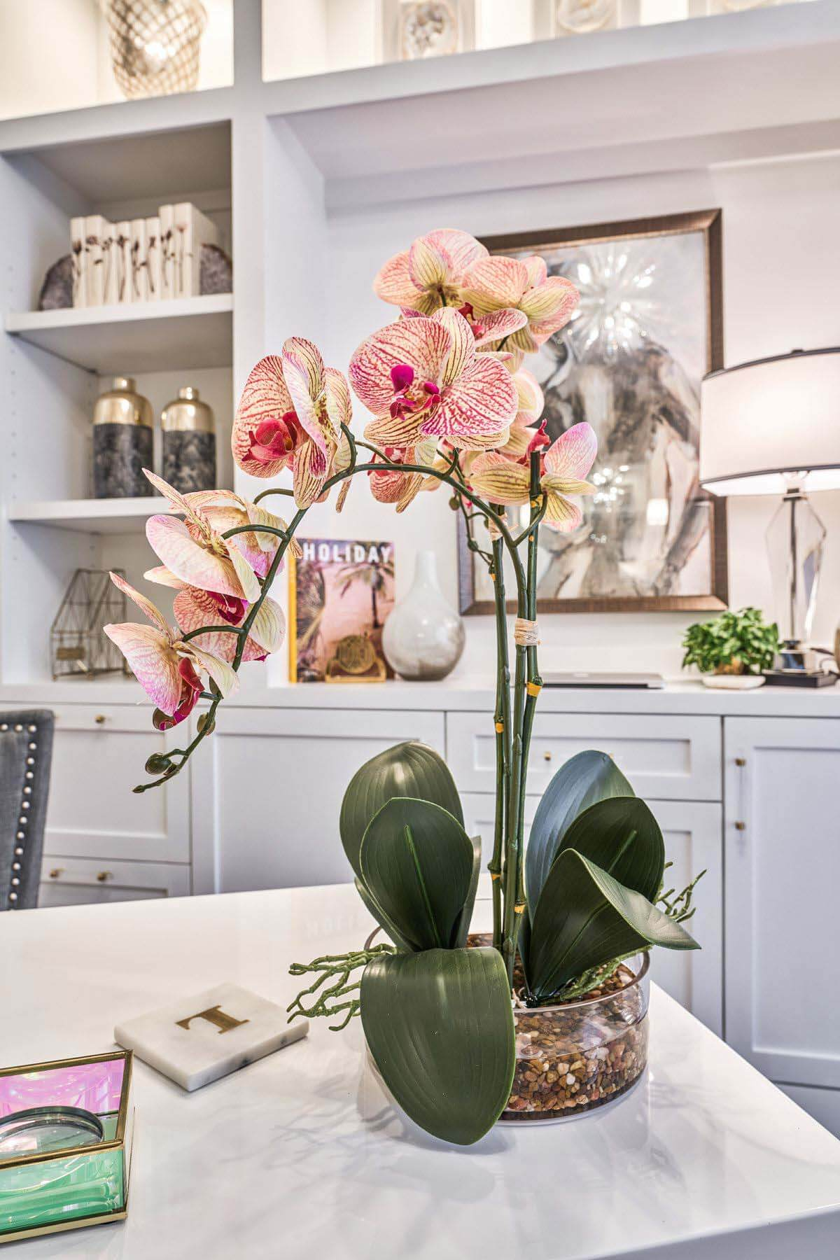 Orchid in office